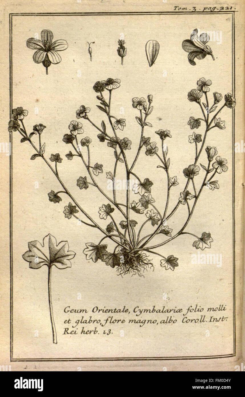Relation d'un voyage du Levant (Plate 33) - Stock Image
