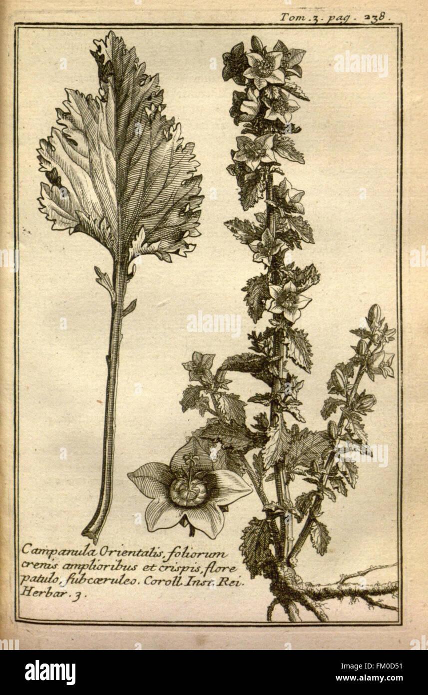 Relation d'un voyage du Levant (Plate 34) - Stock Image
