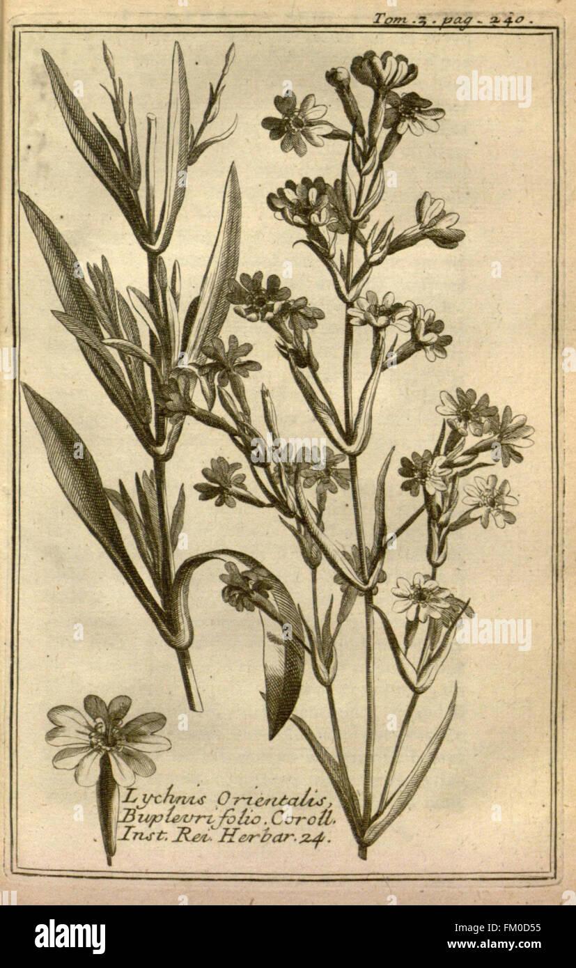 Relation d'un voyage du Levant (Plate 36) - Stock Image