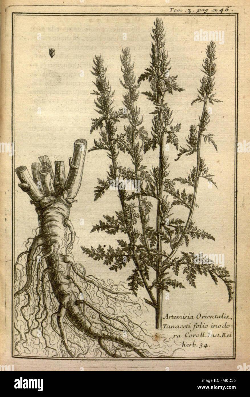 Relation d'un voyage du Levant (Plate 39) - Stock Image