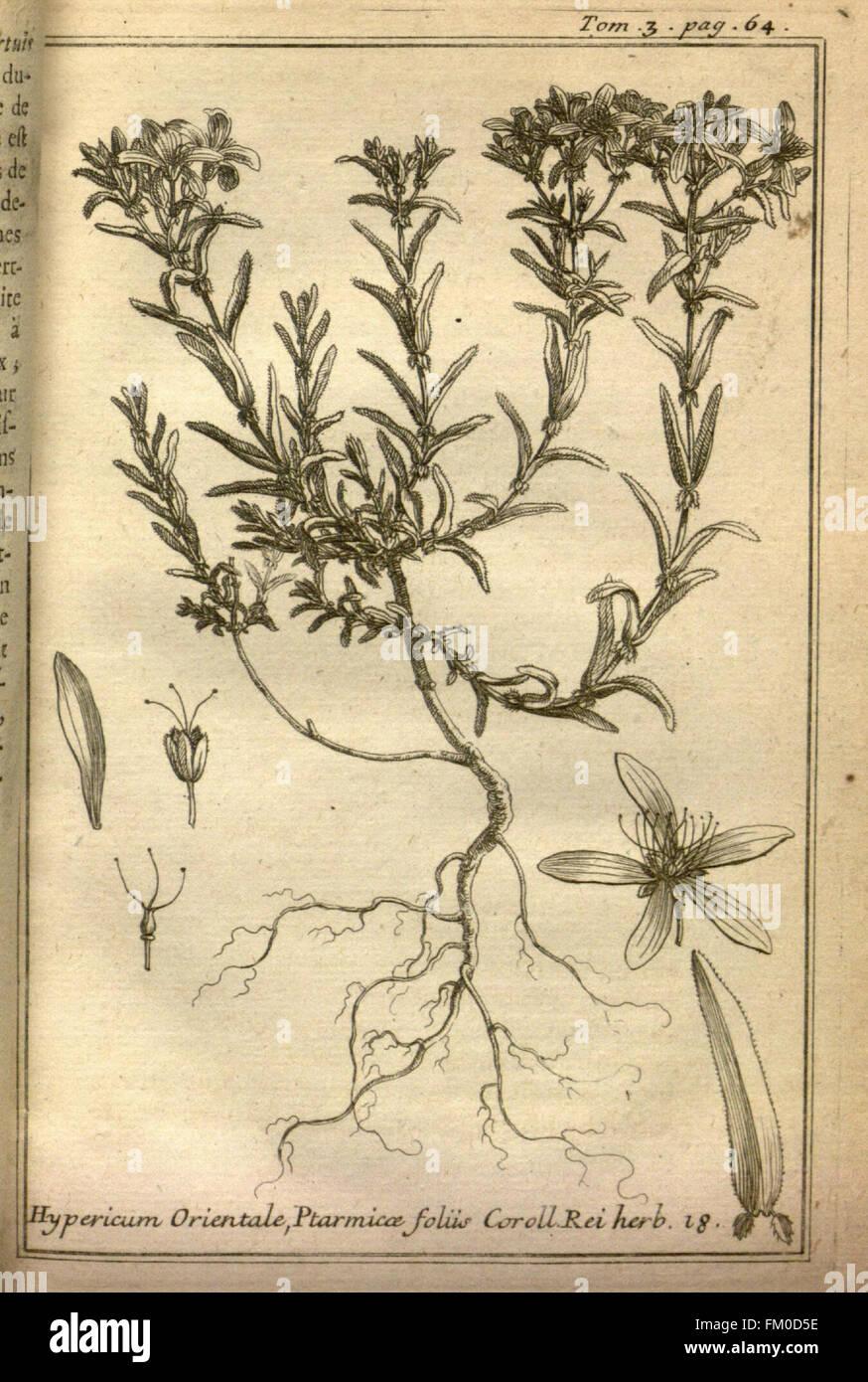 Relation d'un voyage du Levant (Plate 5) - Stock Image