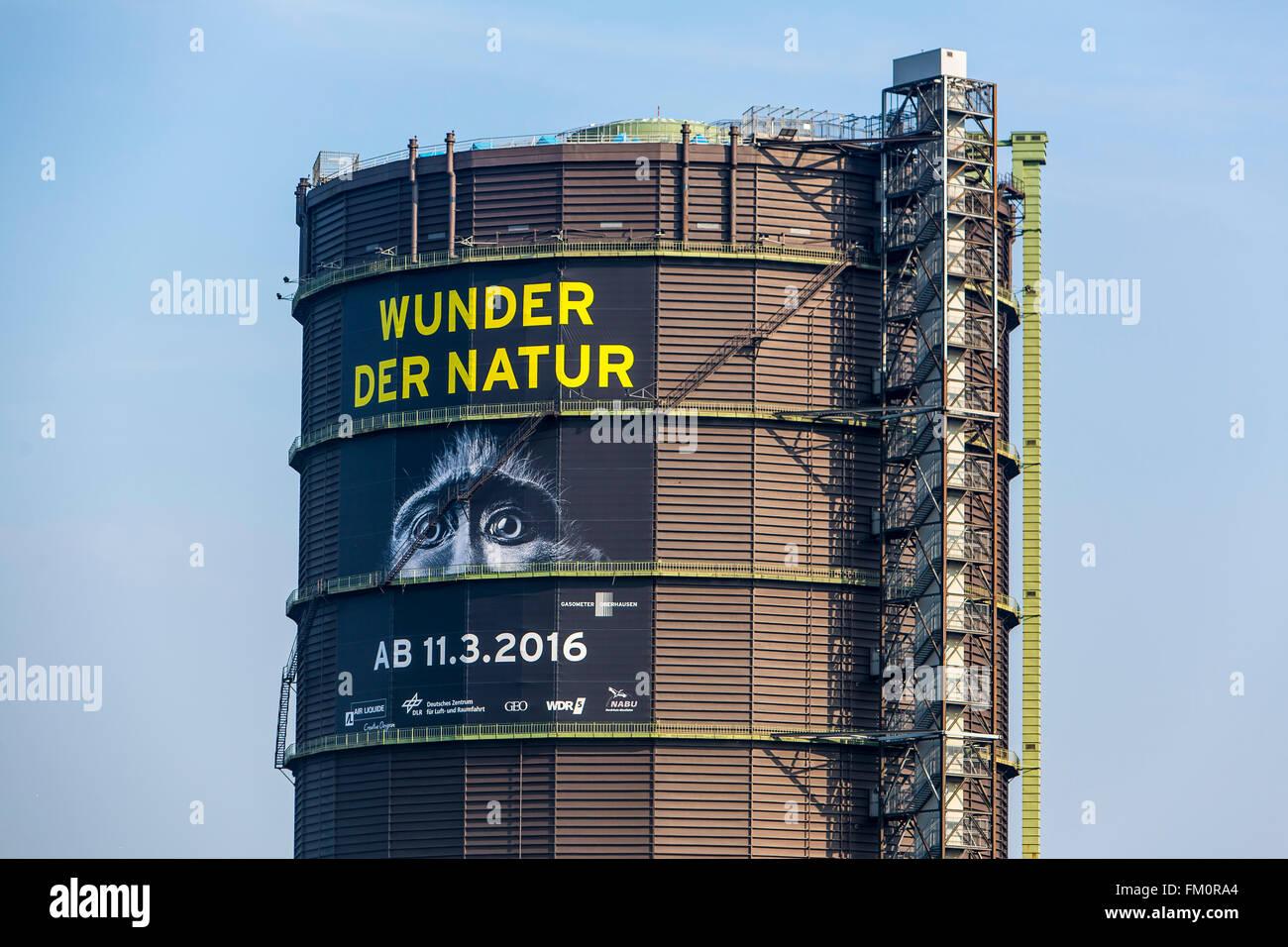 The Gasometer in Oberhausen, Germany, Europe's highest exhibition hall, 117 Meter hight, new exhibition, Wonders - Stock Image