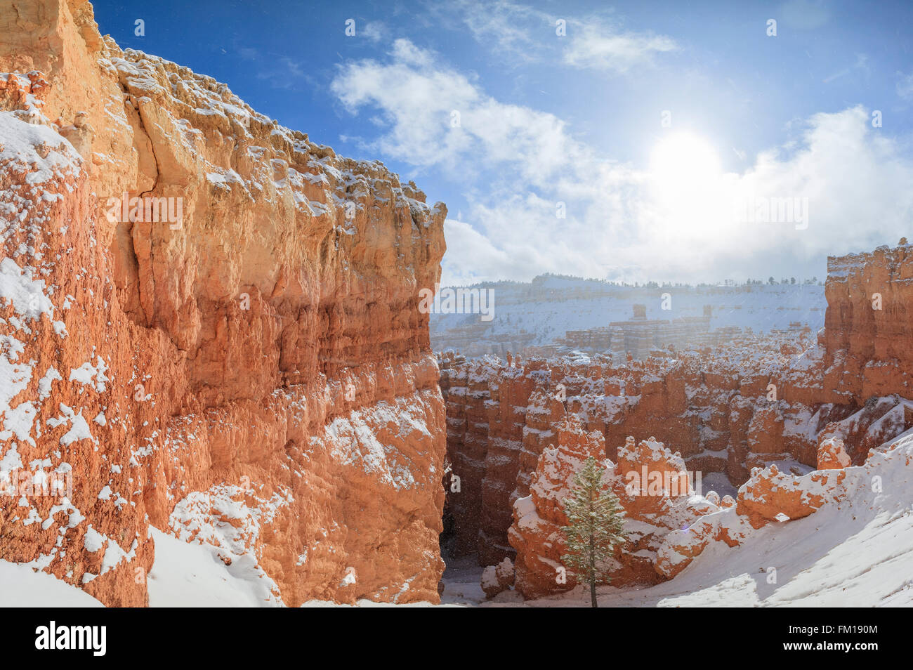 Superb view of Sunset Point of Bryce Canyon National Park at Utah - Stock Image
