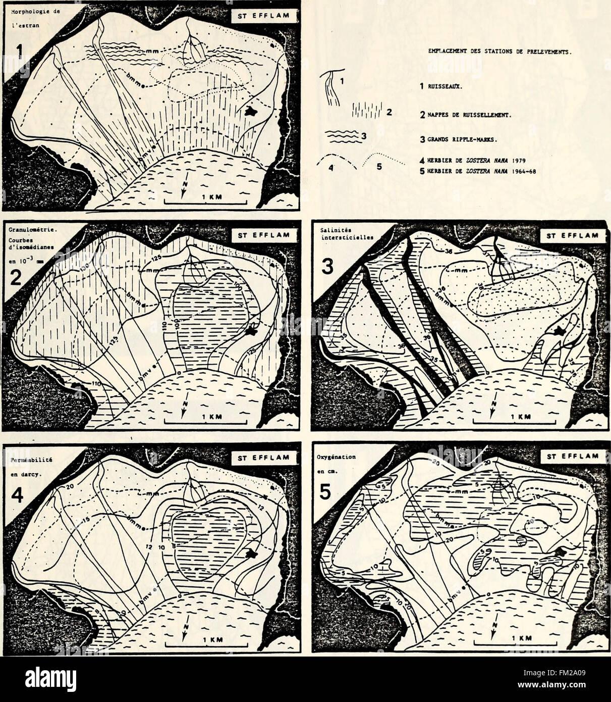 Ecological study of the 'Amoco Cadiz' oil spill (Technical ...