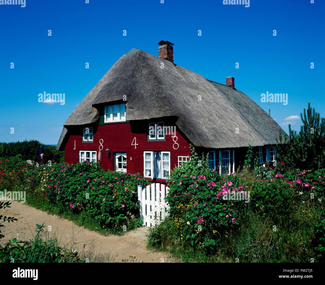 Nebel, traditional thatched frisian house, Amrum island, North Sea, Schleswig-Holstein, Germany, Europe - Stock Image