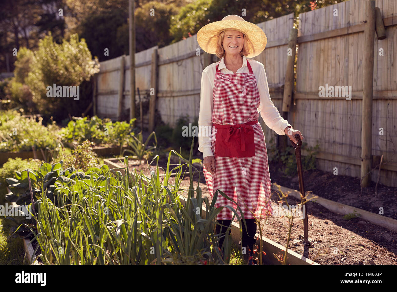 5f4ba8982586a Portrait of a smiling senior woman standing in an urban food garden with a  work tool in a raised bed