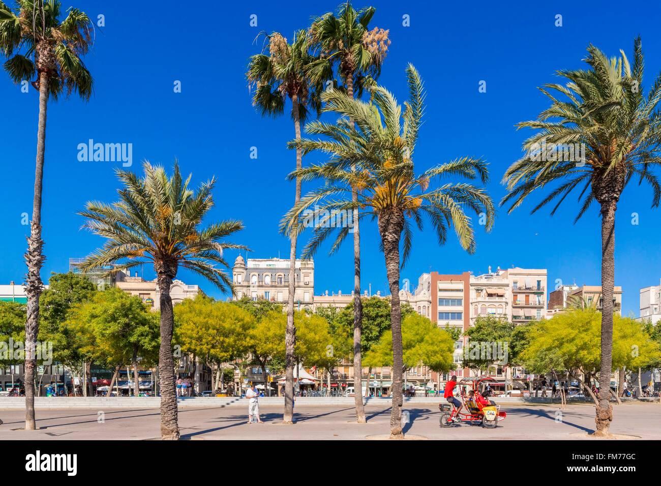 Spain, Catalonia, Barcelona, La Barceloneta, Passeig Joan de Borbo seen from the Port Vell - Stock Image