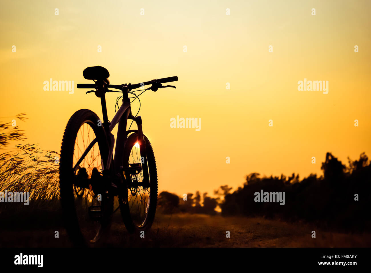 Silhouette of mountain biker in single track on sunset sky - Stock Image