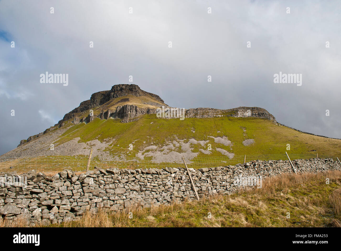 pen-y-gent mountain in winter in yorkshire dales with dry stone wall & limestone pavement on 3 peaks walking - Stock Image