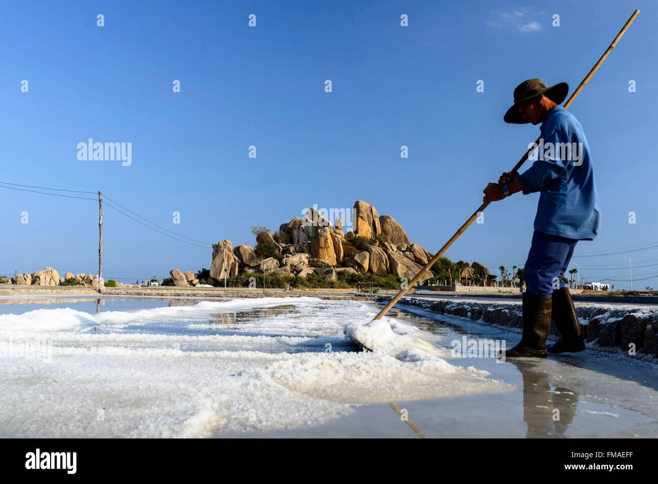 Vietnam, Ninh Thuan province, Phan Rang, salin, harvesting salt in the salins - Stock Image