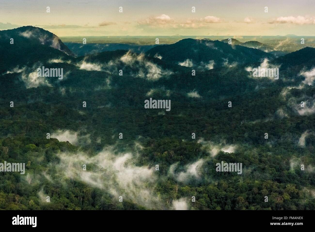 France, Guyana, French Guyana Amazonian Park, heart area, the evening mists in the Amazon rainforest - Stock Image