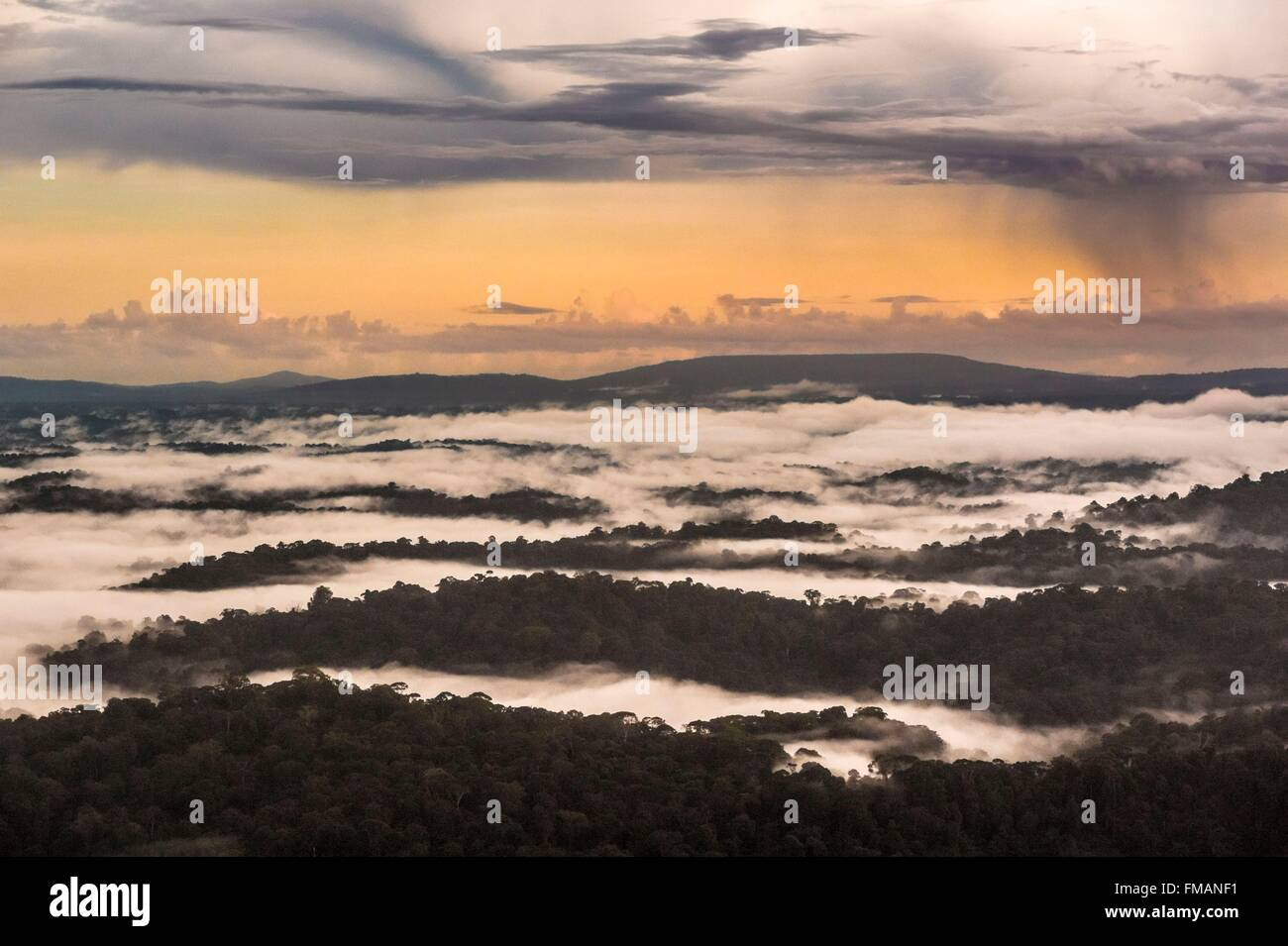 France, Guyana, French Guyana Amazonian Park, heart area, storm on the Amazon forest - Stock Image
