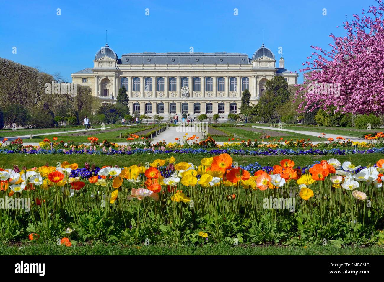 France, Paris, Museum of Natural History, the Plants Gardens and the Grand Gallery of Evolution - Stock Image