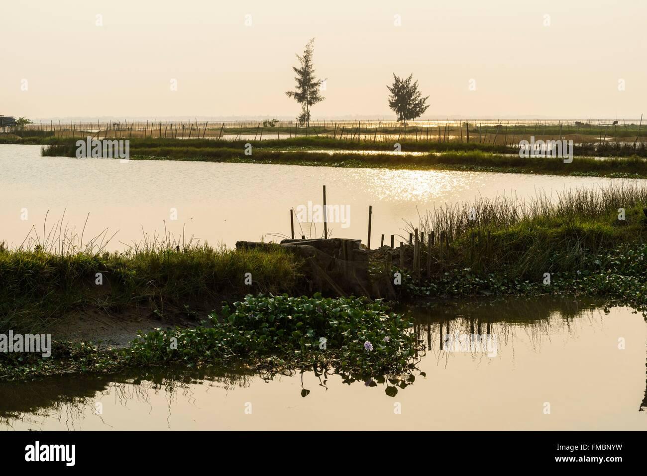 Vietnam, Thua Thien Hue province, Tam Giang lagoon - Stock Image