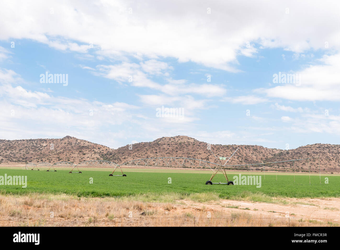 A center pivot irrigation system using rotator style pivot applicator sprinklers near Venterstad in the Eastern - Stock Image