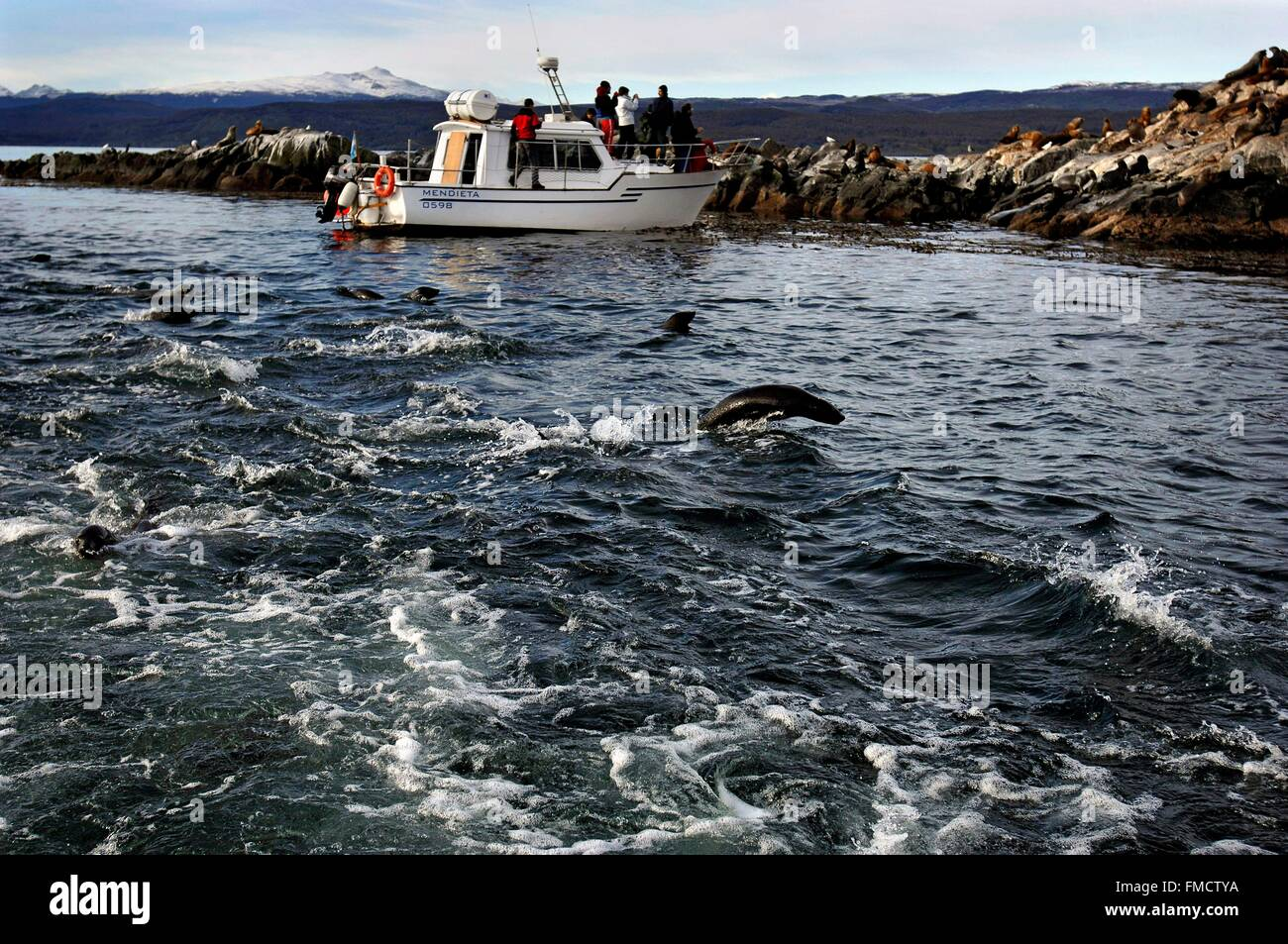 Argentina, Patagonia, Tierra del Fuego province, Ushuaia, a group of tourists observe South American sea lions (Otaria Stock Photo