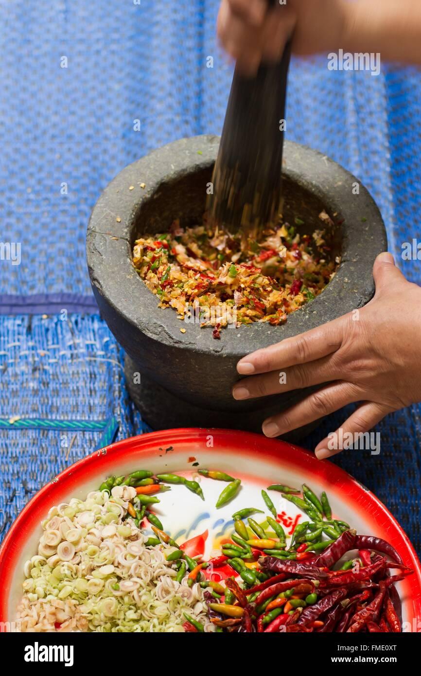 Thai herb ingredient making Red Curry Paste - Stock Image