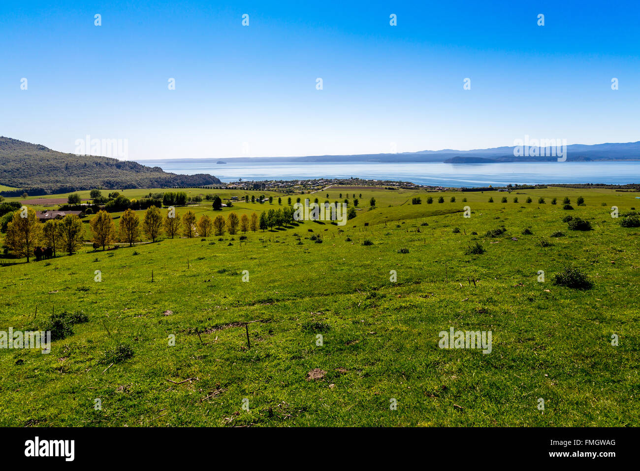 Landscape in New Zealand - Stock Image