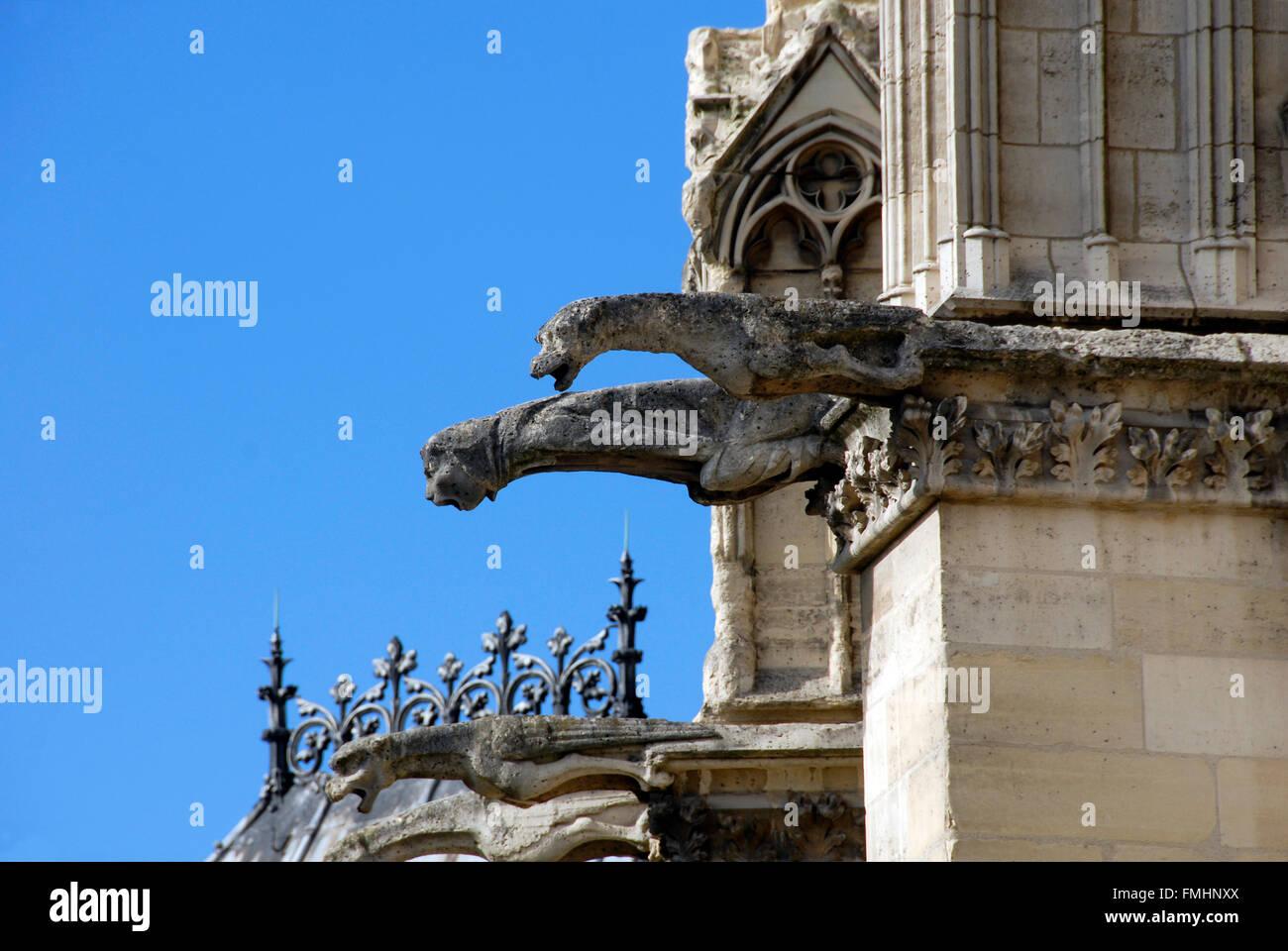 Gargoyles on Nôtre Dame Cathedral Paris - Stock Image