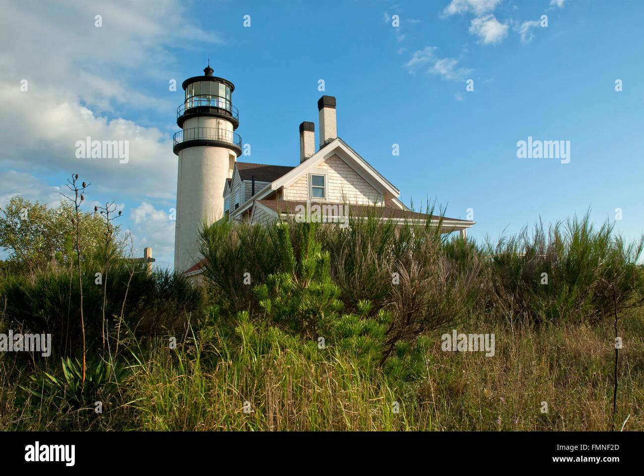 Low angle sun illuminates Highland lighthouse which is surrounded by shrubbery on Cape Cod. - Stock Image