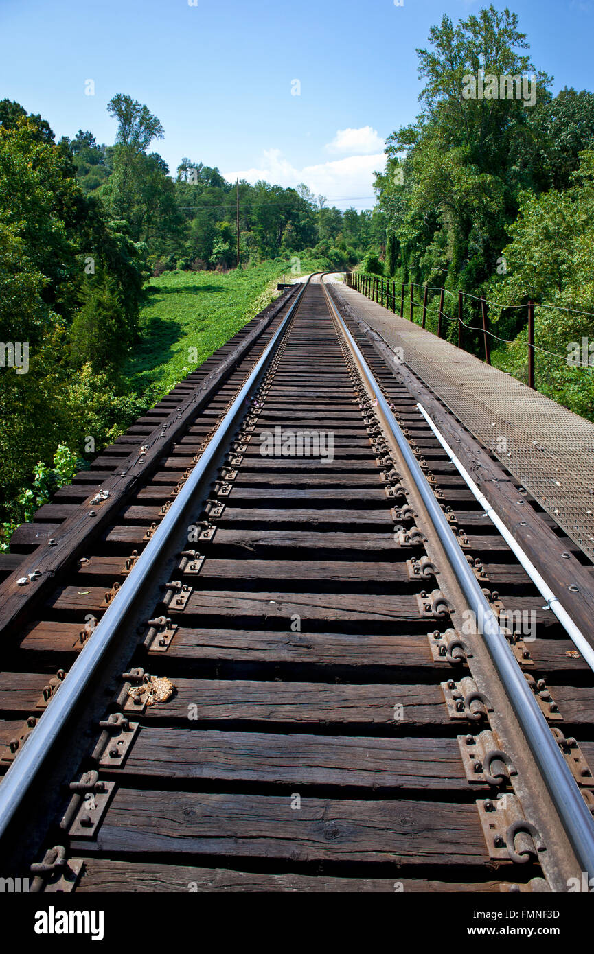 Train Tracks Through Tennessee Forest - Stock Image