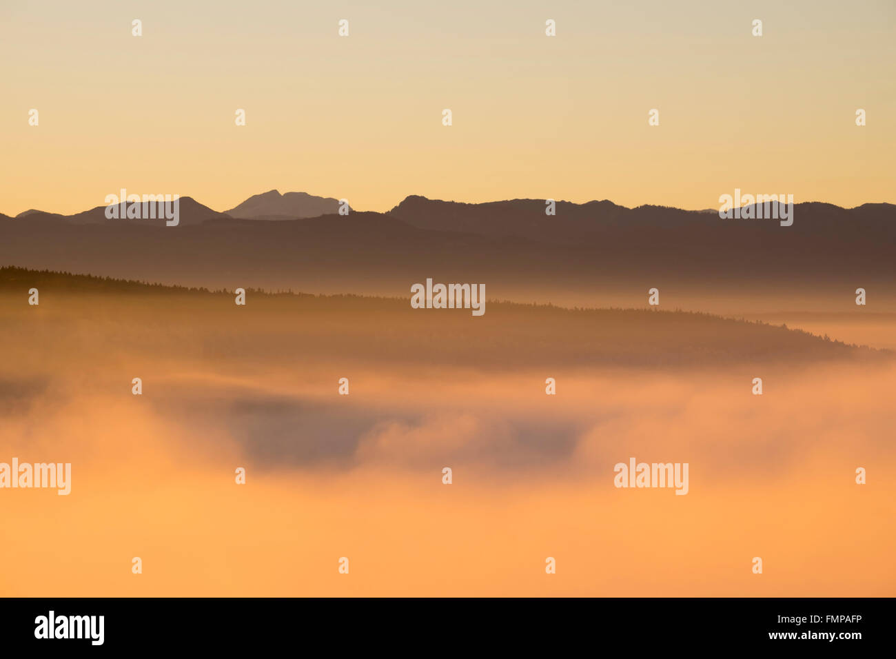 Morning fog at sunrise over the Pupplinger Au, view from Weiße Wand in Icking, in the back the Alps, Upper - Stock Image
