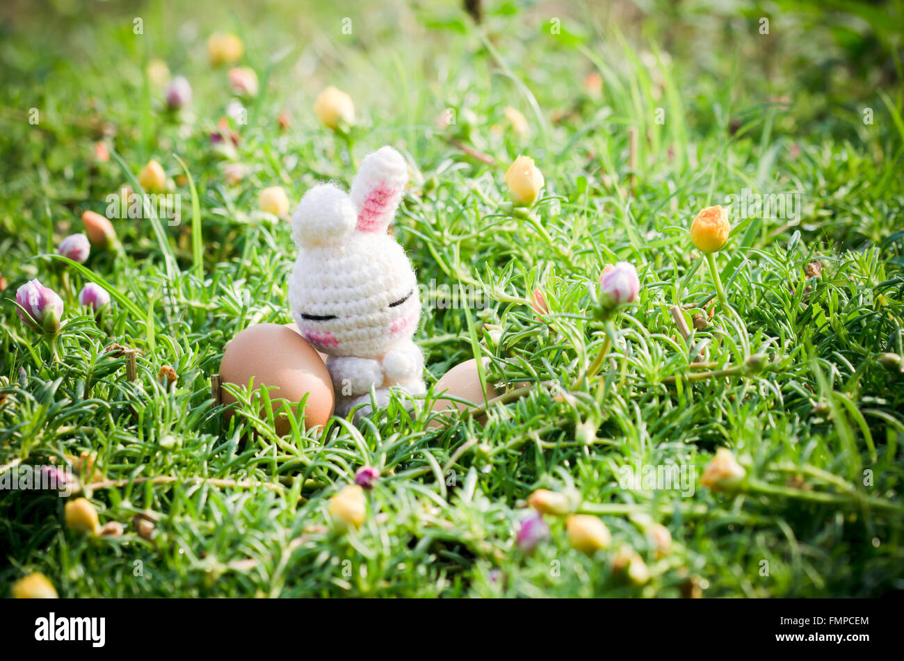 White Bunny With Easter Eggs On Colorful Flowers In The Morning