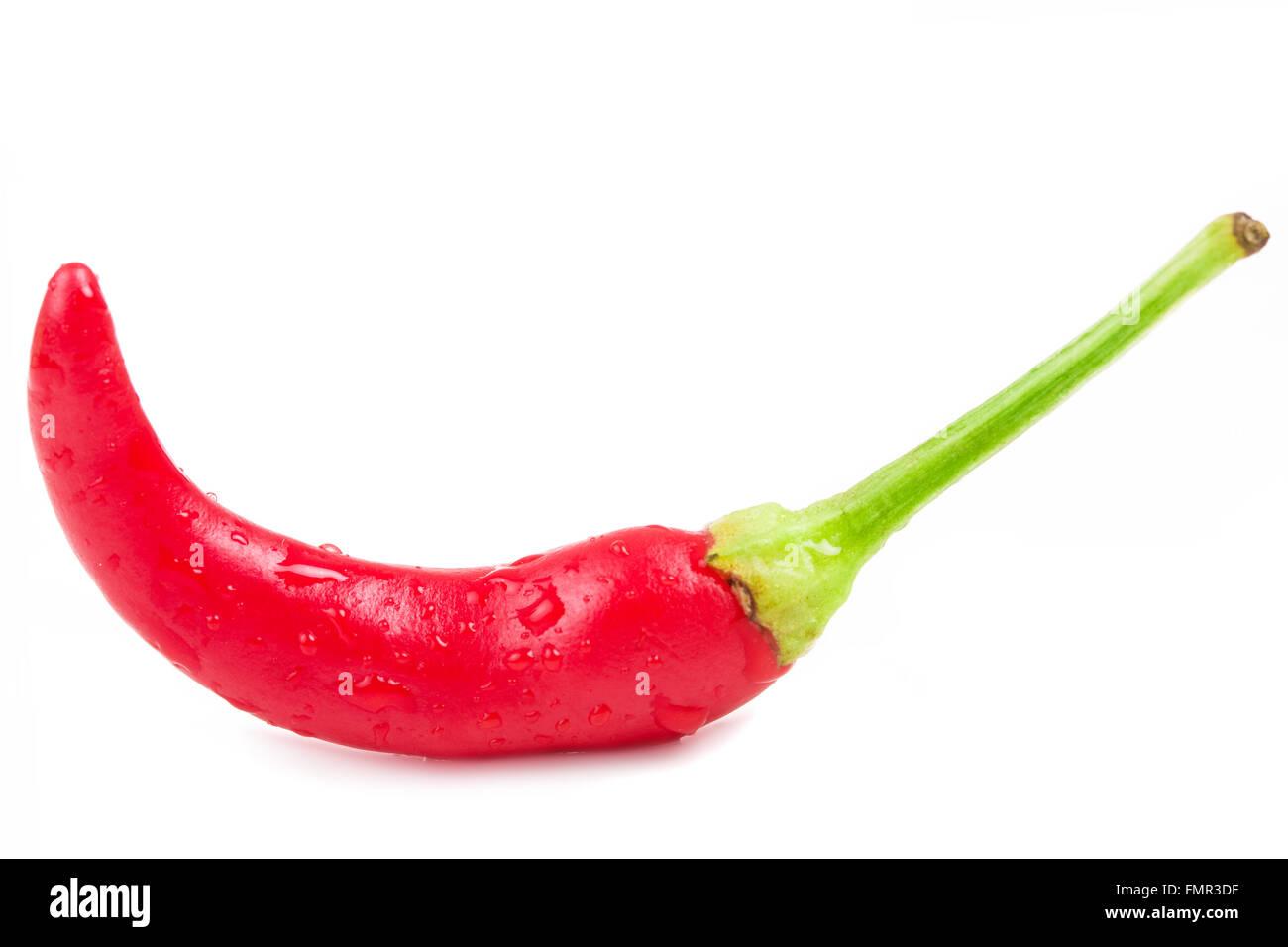 Chilli pepper on white background - Stock Image