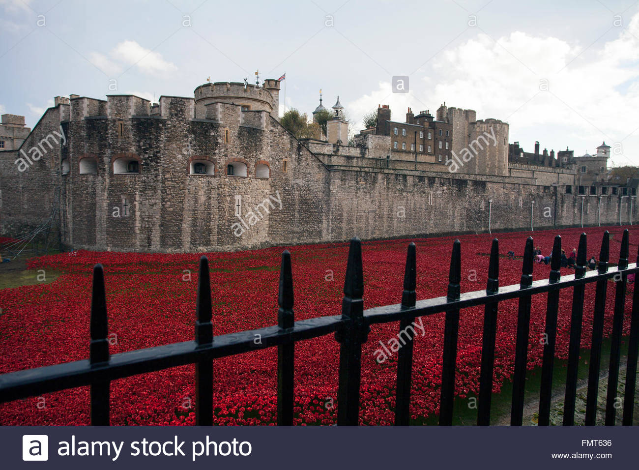 The dismantling of the Blood Swept Lands and Seas of Red exhibit, ceramic poppies, each representing a WW1 British - Stock Image