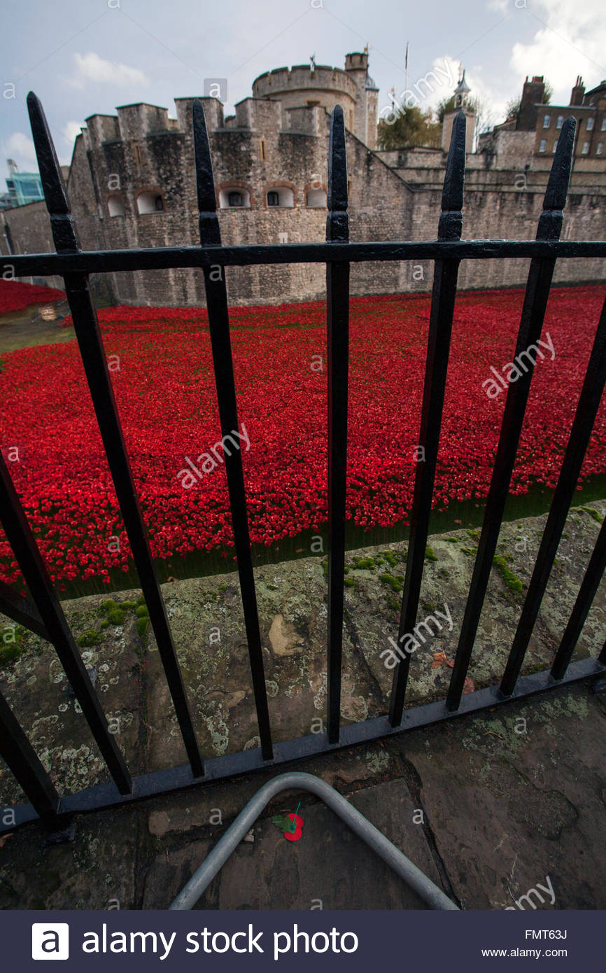 View through iron fence, sea of ceramic poppies, Tower of London, lost poppy pin lying fallen on the ground  © - Stock Image