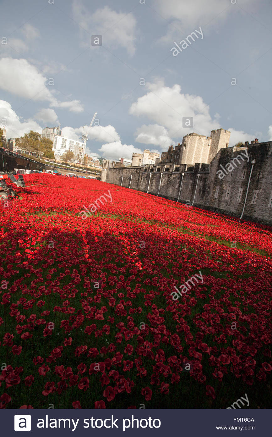 Shadows of people fall upon ceramic poppies during the dismantling of Blood Swept Lands and Seas of Red exhibit, - Stock Image