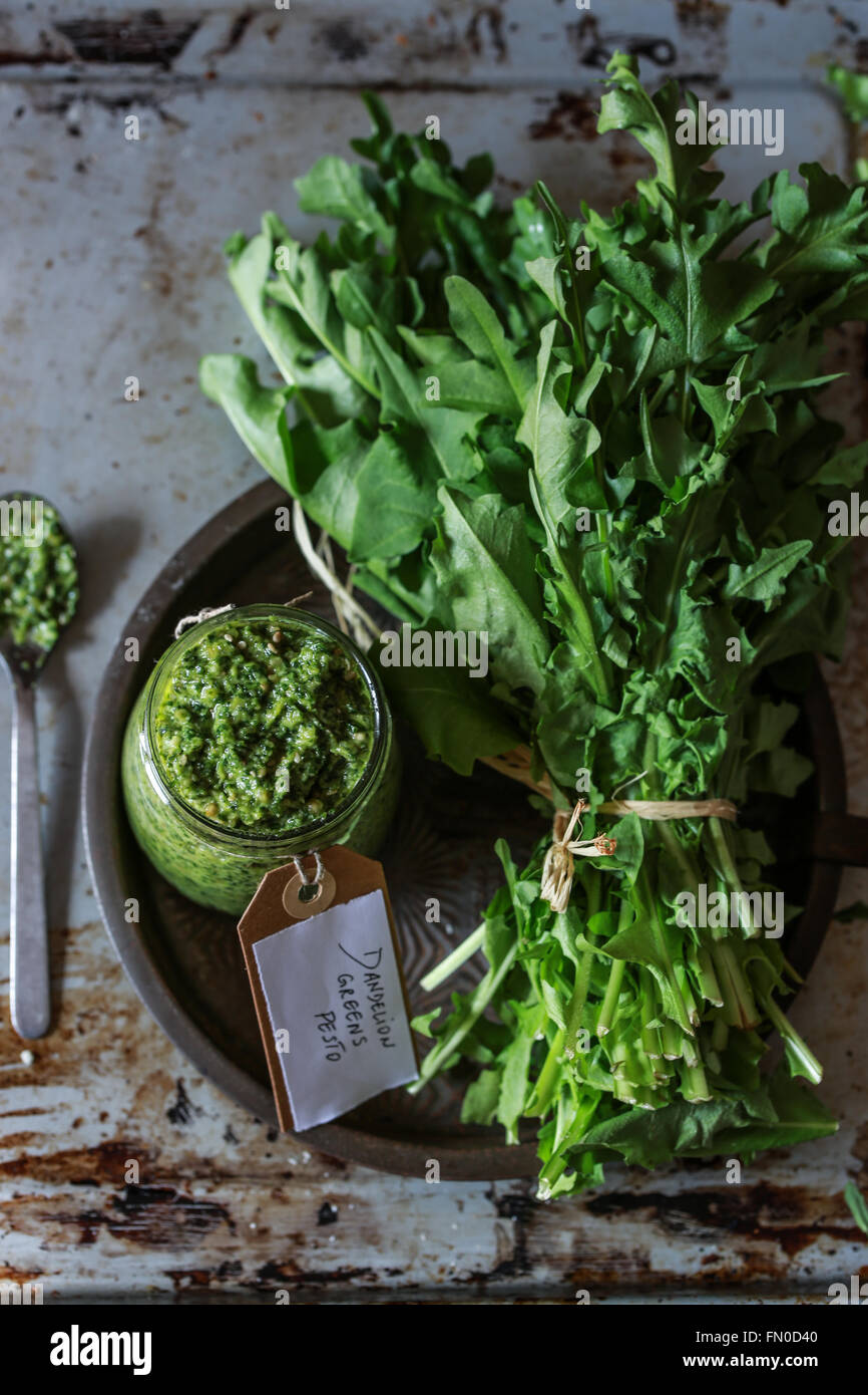 Bunch of fresh dandelions leaves and a jar of pesto - Stock Image