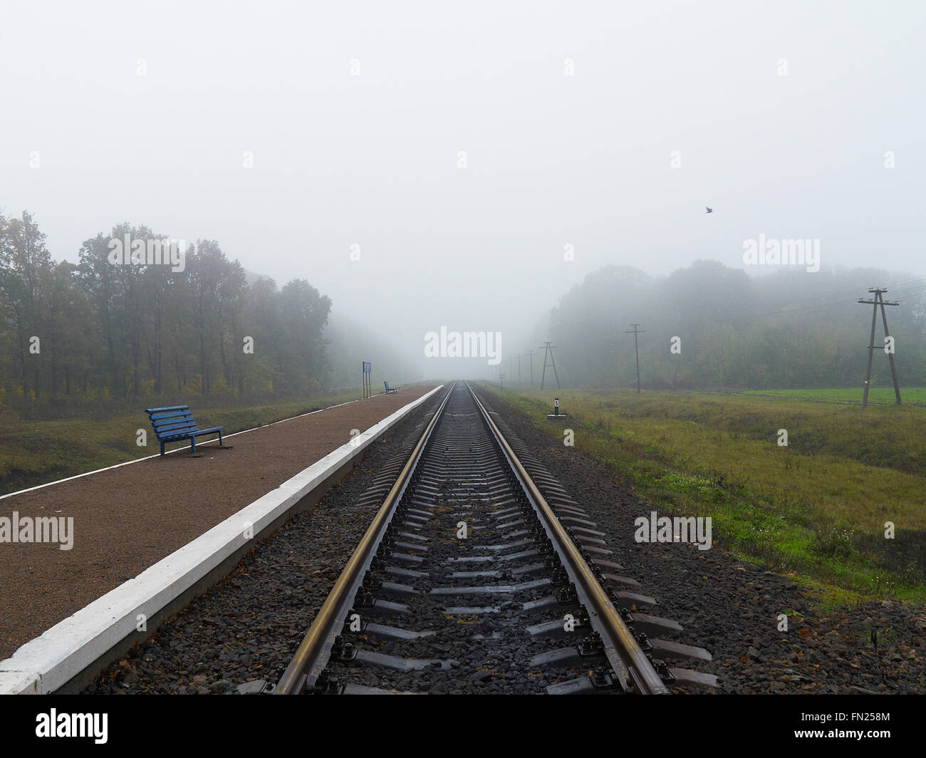 Empty railroad station platform with two benches on foggy day - Stock Image