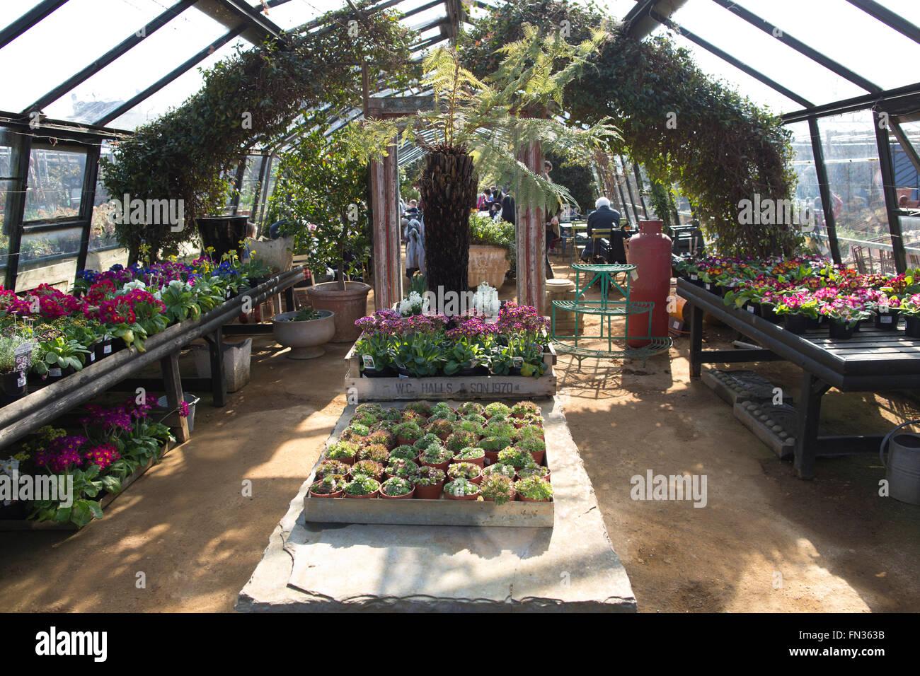 Petersham Nurseries bohemian jumble of greenhouses and gardens of Petersham House, Richmond Upon Thames, Surrey, Stock Photo