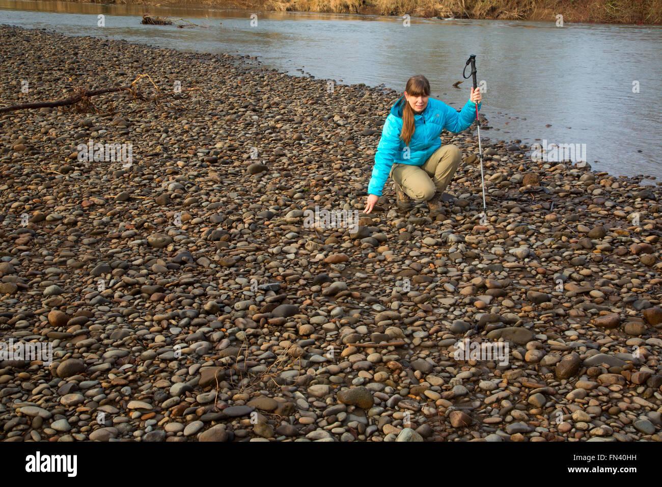 Agate Hunting On Molalla River Molalla River State Park