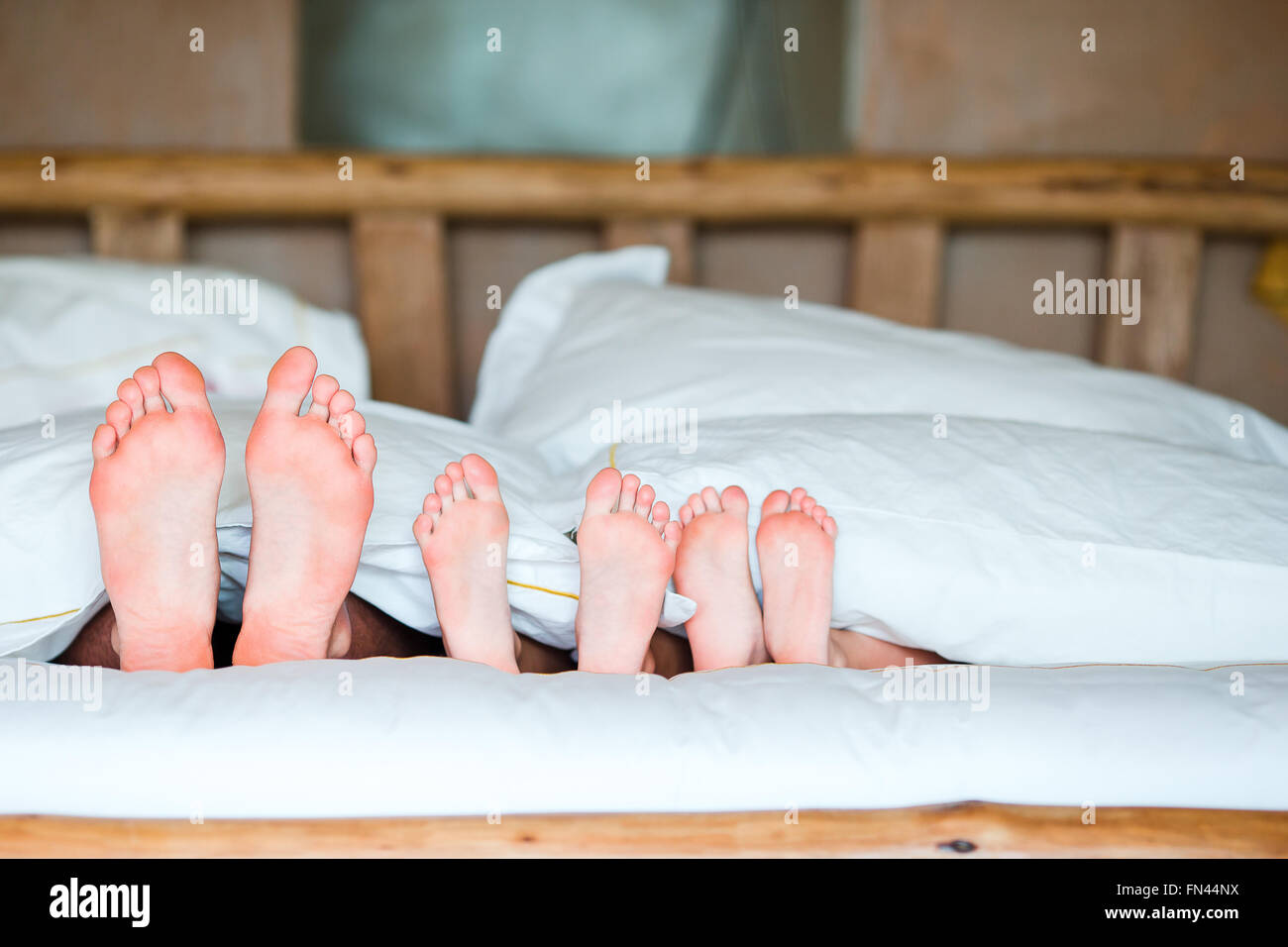 Feet of family in bed - Stock Image