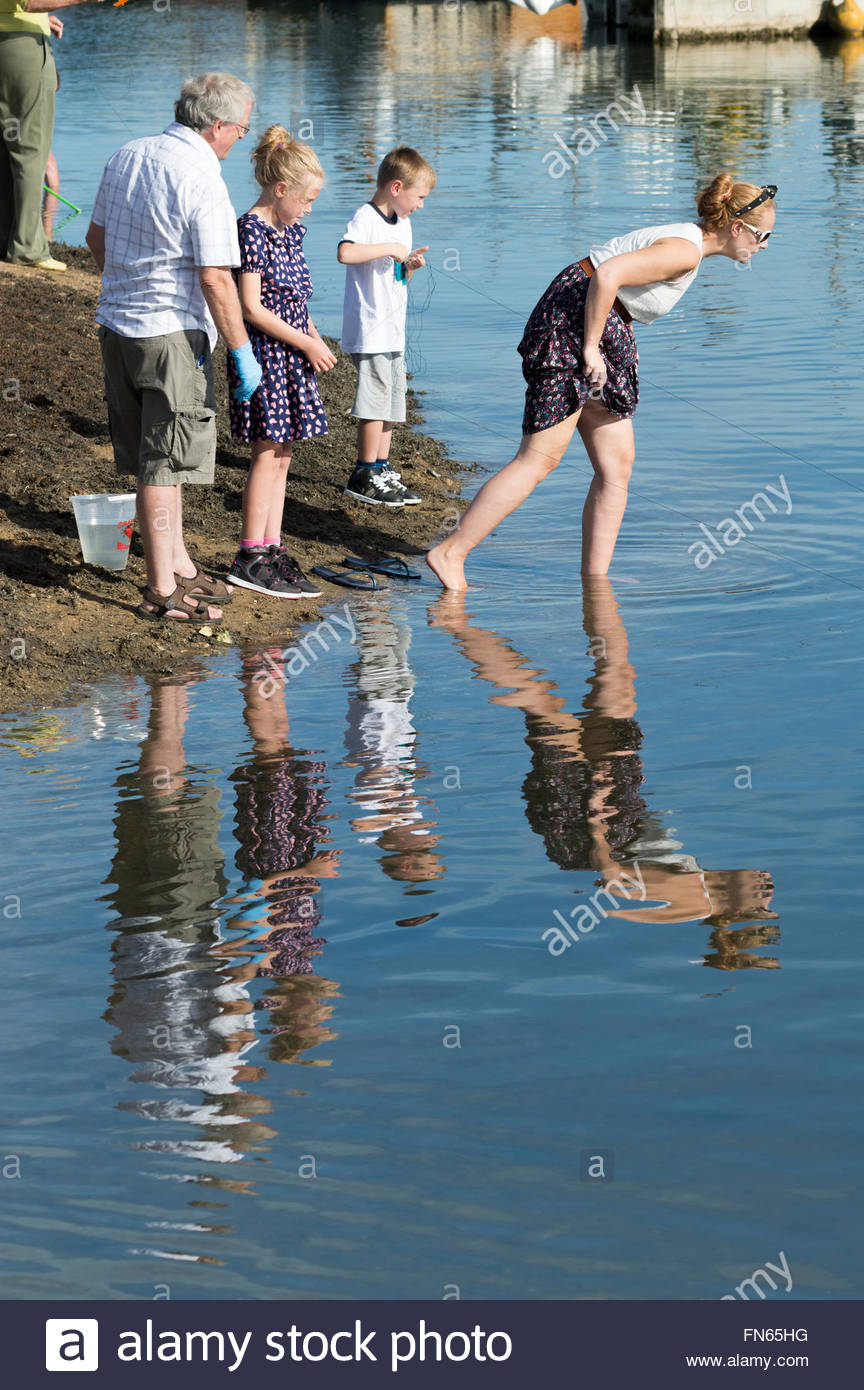 Family and their reflections in the water of Poole Harbour, Dorset - Stock Image
