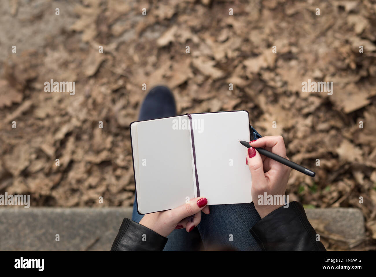 Top view image of open pad in feamle hands with pen sitting on stairs in the park. Blank sheets of small notebook - Stock Image
