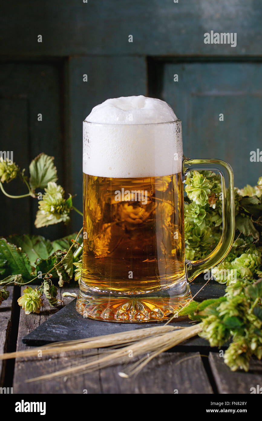 Mug of lager beer - Stock Image