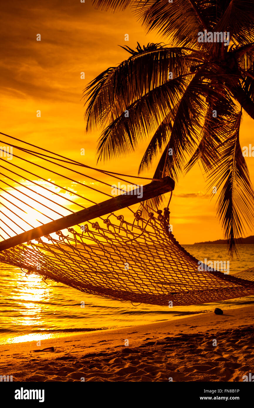Hammock on a palm tree during beautiful sunset on tropical Fiji Islands - Stock Image