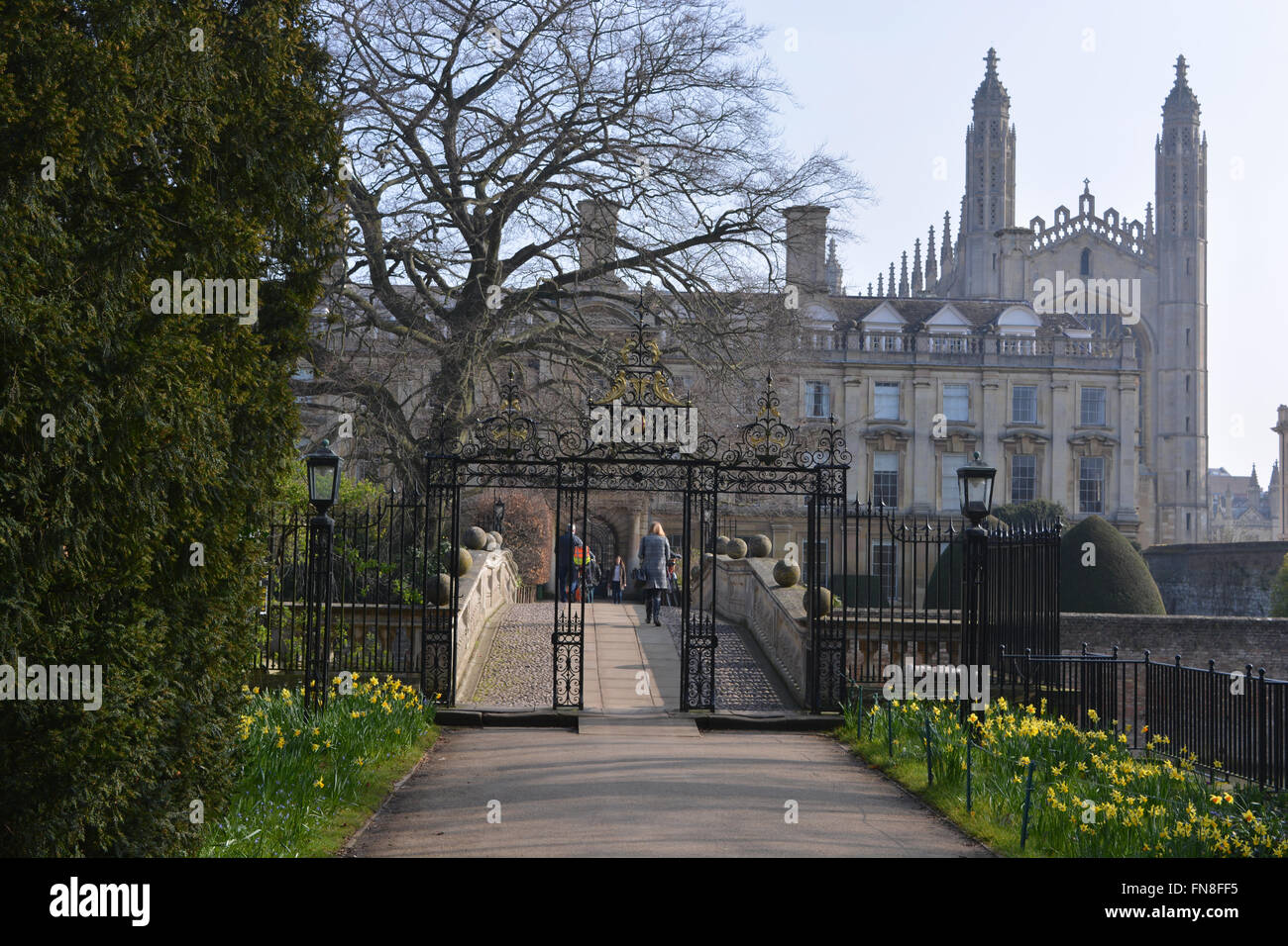 Clare Bridge from The Avenue, looking to Clare College and Scholars' Garden, University of Cambridge, England, - Stock Image