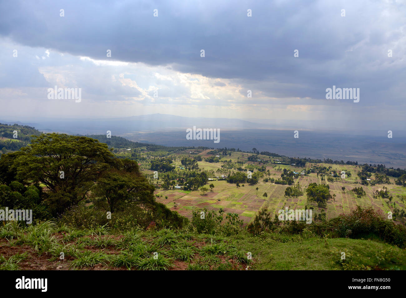 Africa: Kenya: The East African Rift Valley looking North West from Limuru over the farmed terraces towards the Stock Photo