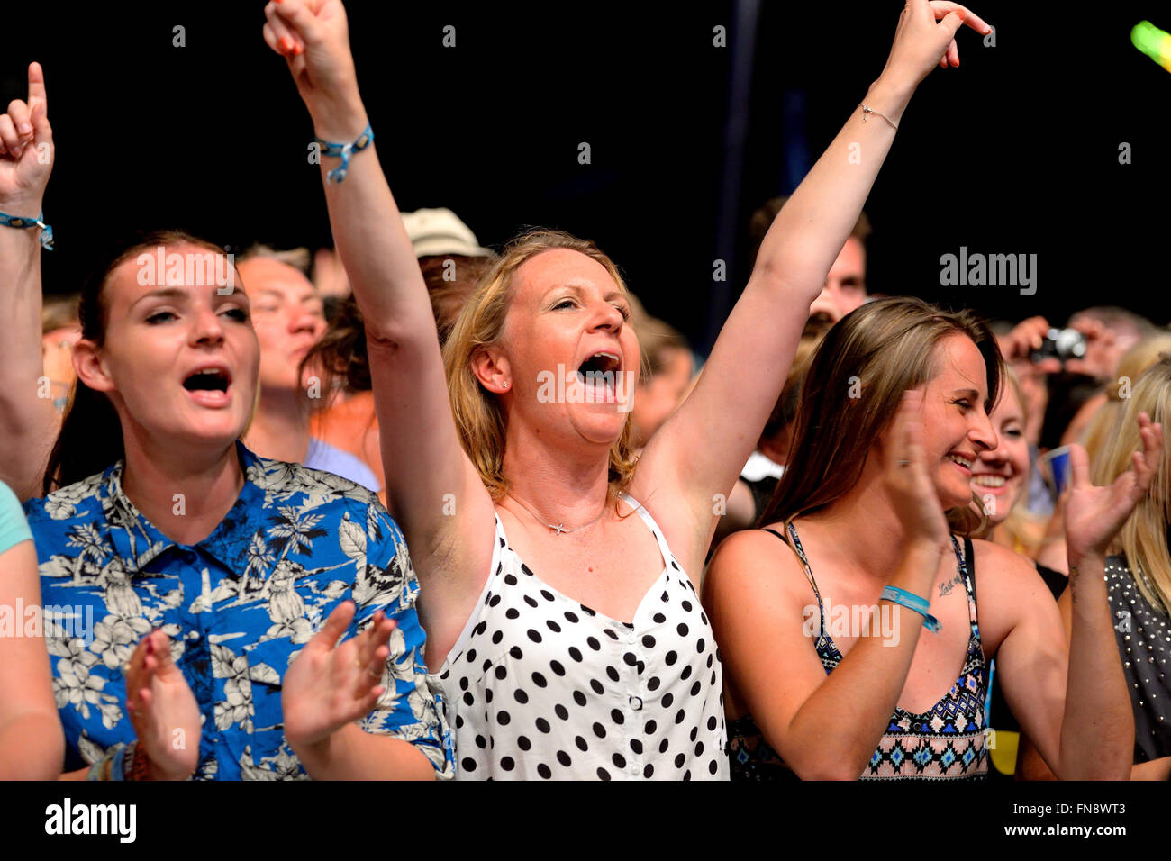 BENICASSIM, SPAIN - JULY 19: Crowd in a concert at FIB Festival on July 19, 2014 in Benicassim, Spain. - Stock Image