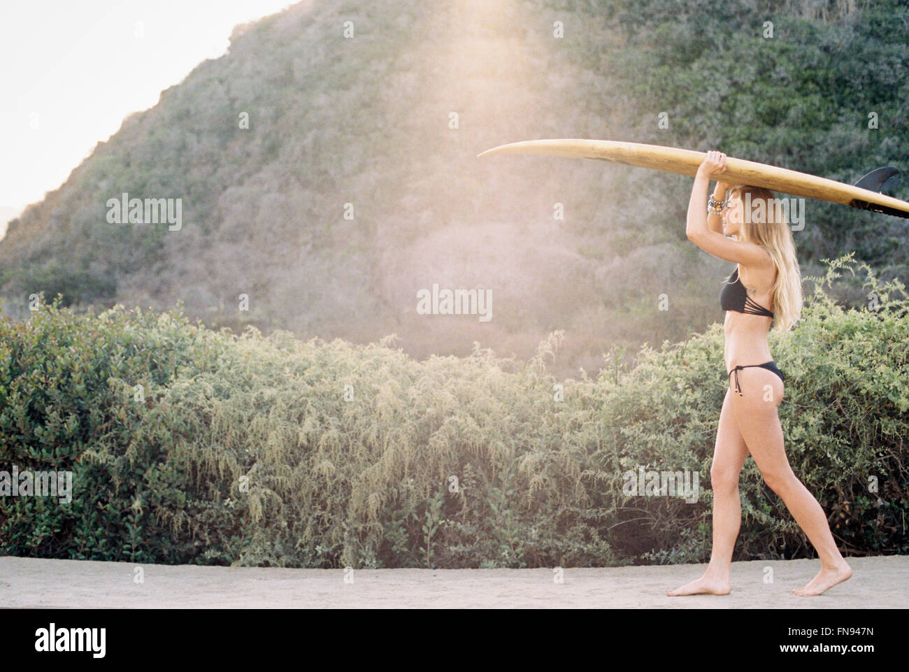 A woman in a black bikini walking down a path carrying a surfboard on her head. - Stock Image
