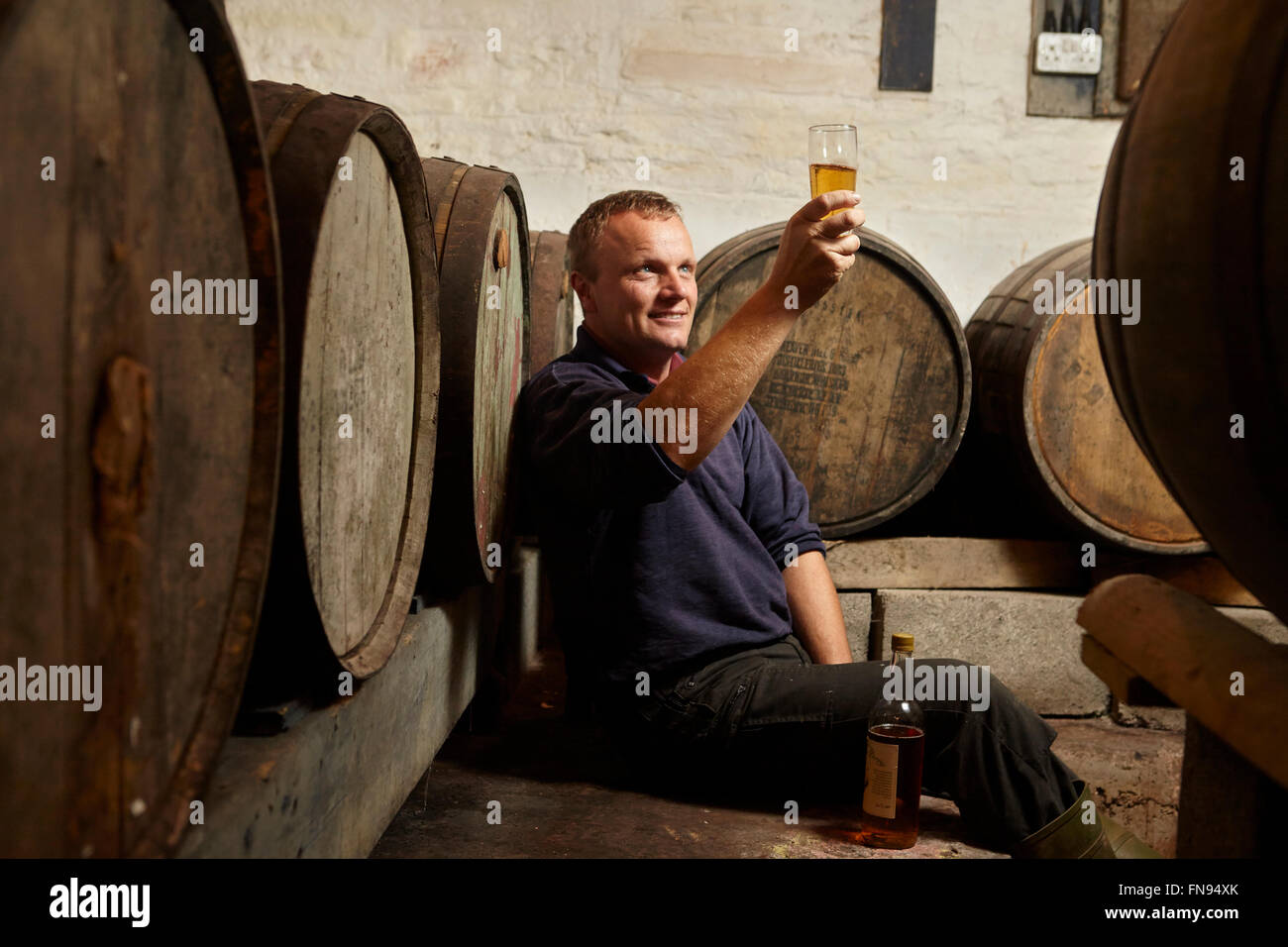 A man sitting among oak barrels at a cider makers, raising a glass and tasting the brew. - Stock Image
