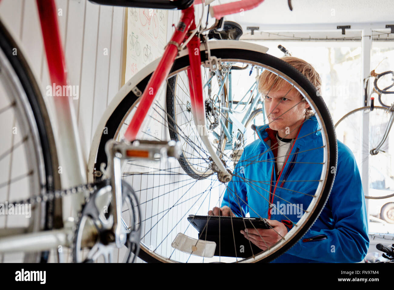 A young man working in a cycle shop, repairing a bicycle. - Stock Image
