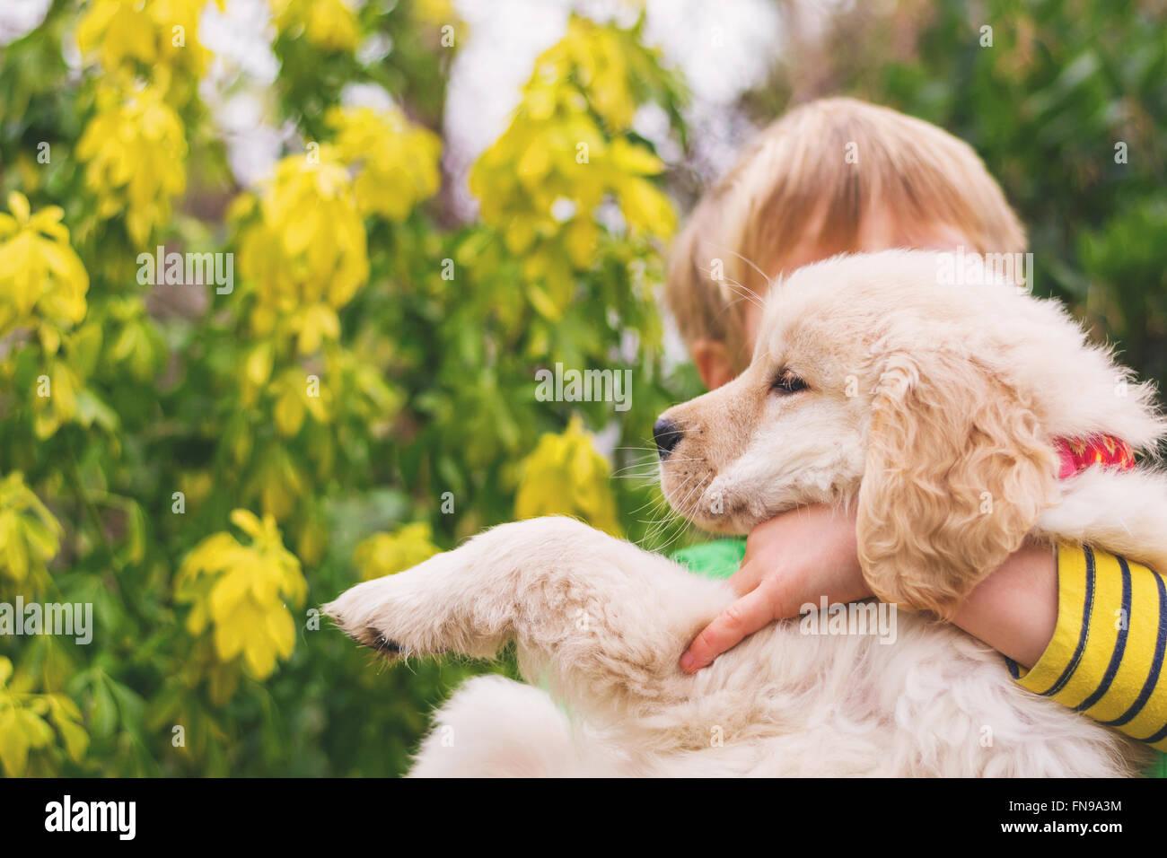 Boy hugging his golden retriever puppy dog - Stock Image