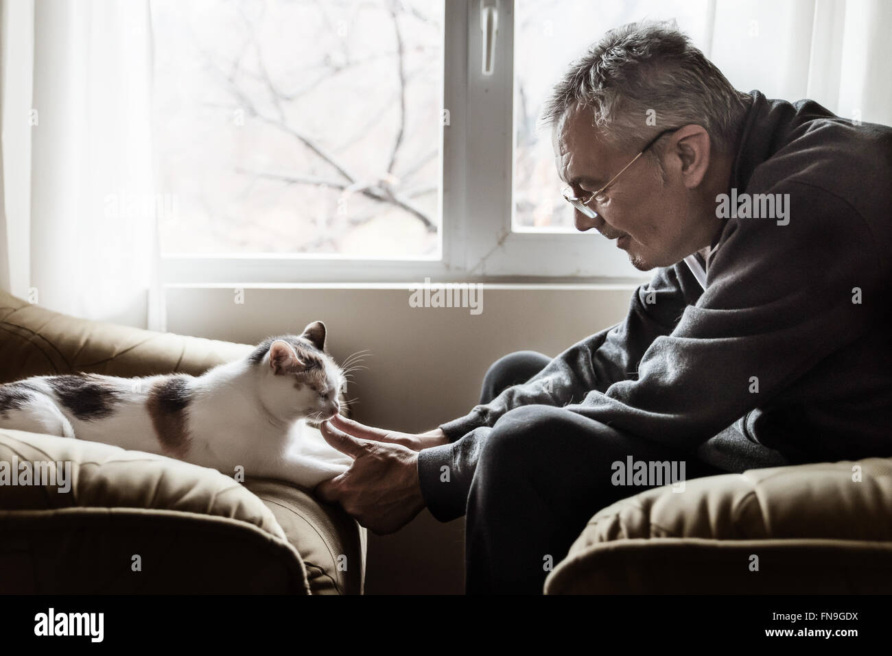 Man holding cat's paws Stock Photo