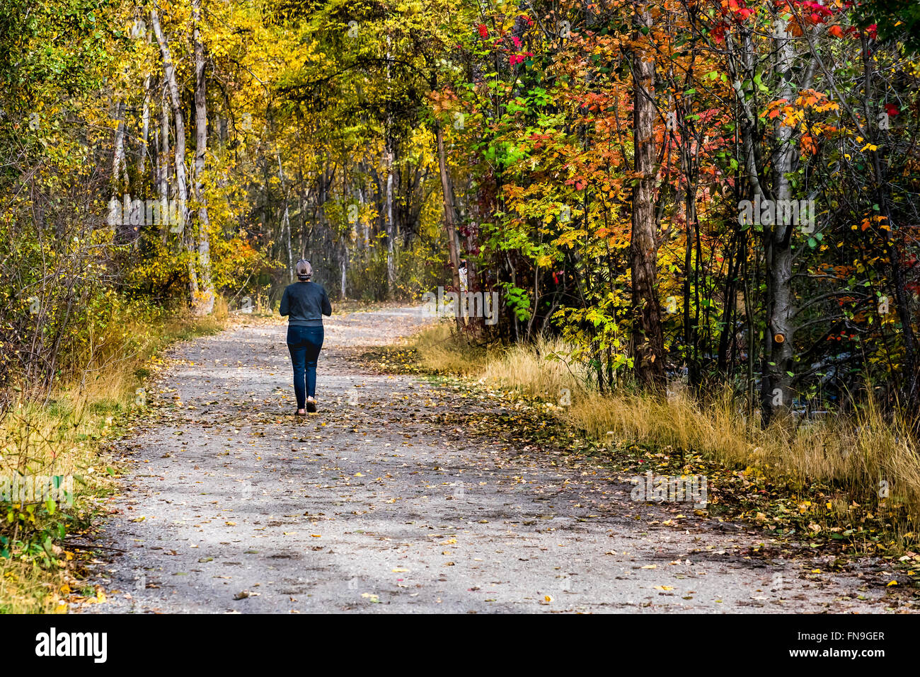 Woman jogging in the park, British Columbia, Canada Stock Photo