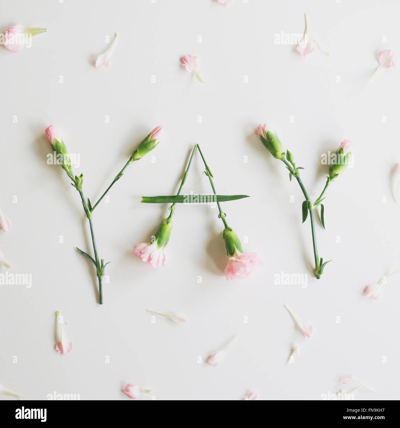 YAY spelled out with carnations - Stock Image